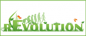 Evolution vs Revolution in Performance Management Software